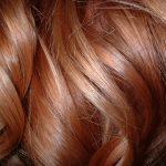 hair_texture1667.jpg